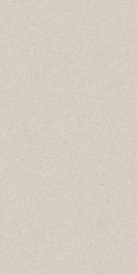 Солид Уайт 60x120