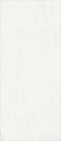 Charme Deluxe Floor Project Bianco Michelangelo 120x278
