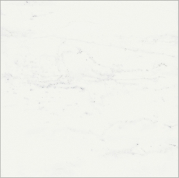 Charme Deluxe Floor Project Bianco Michelangelo 80x80