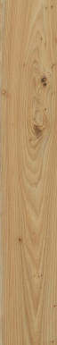 Element Wood Olmo 20x120